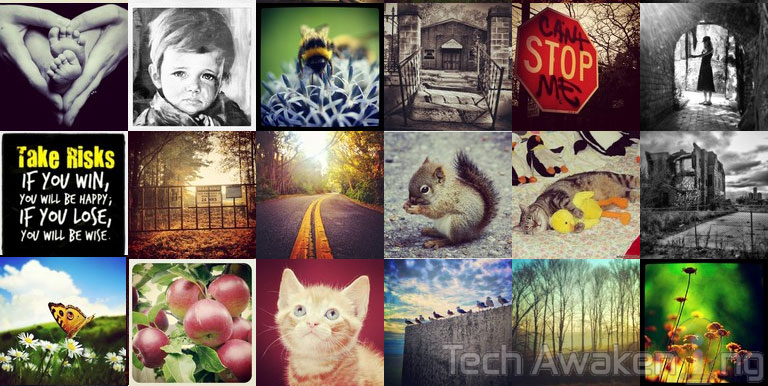 How to create a collage of Instagram photos Online for Free